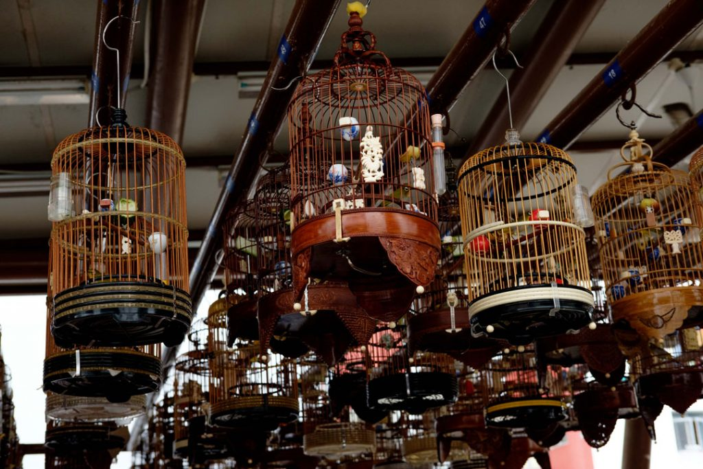 Image result for uncle bird cage singapore
